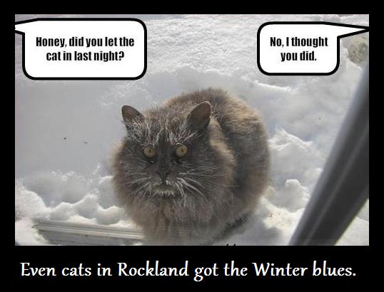 rockland cats